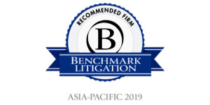 2019 Benchmark Litigation