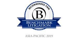 2019 Benchmark Litigation